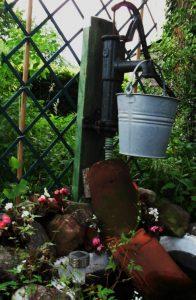 waterpomp pump vintage bucket emmer tuin moestuin permacultuur eetbare tuin pottager vergeten groenten edible kitchen garden vegetables permaculture